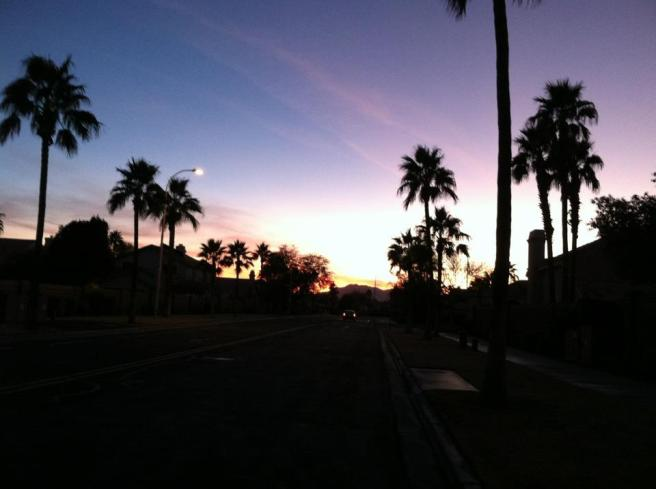 Phoenix, sunsets, palm trees