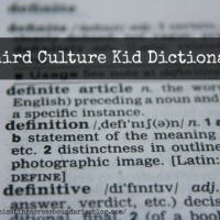 The Third Culture Kid Dictionary