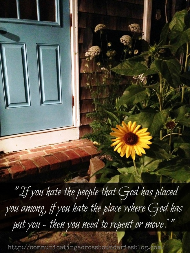 Sunflower and blue door with quote