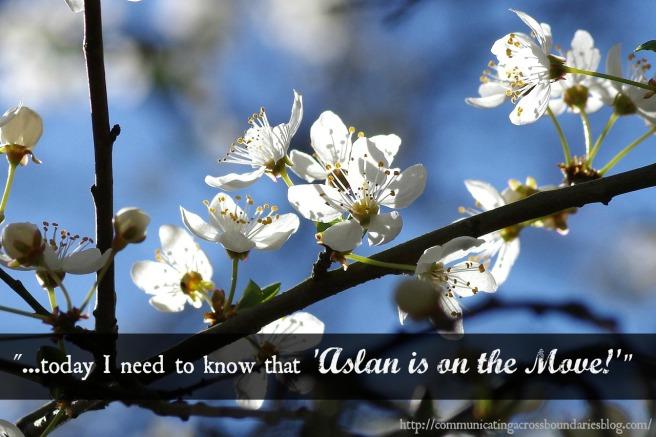 spring - Aslan quote