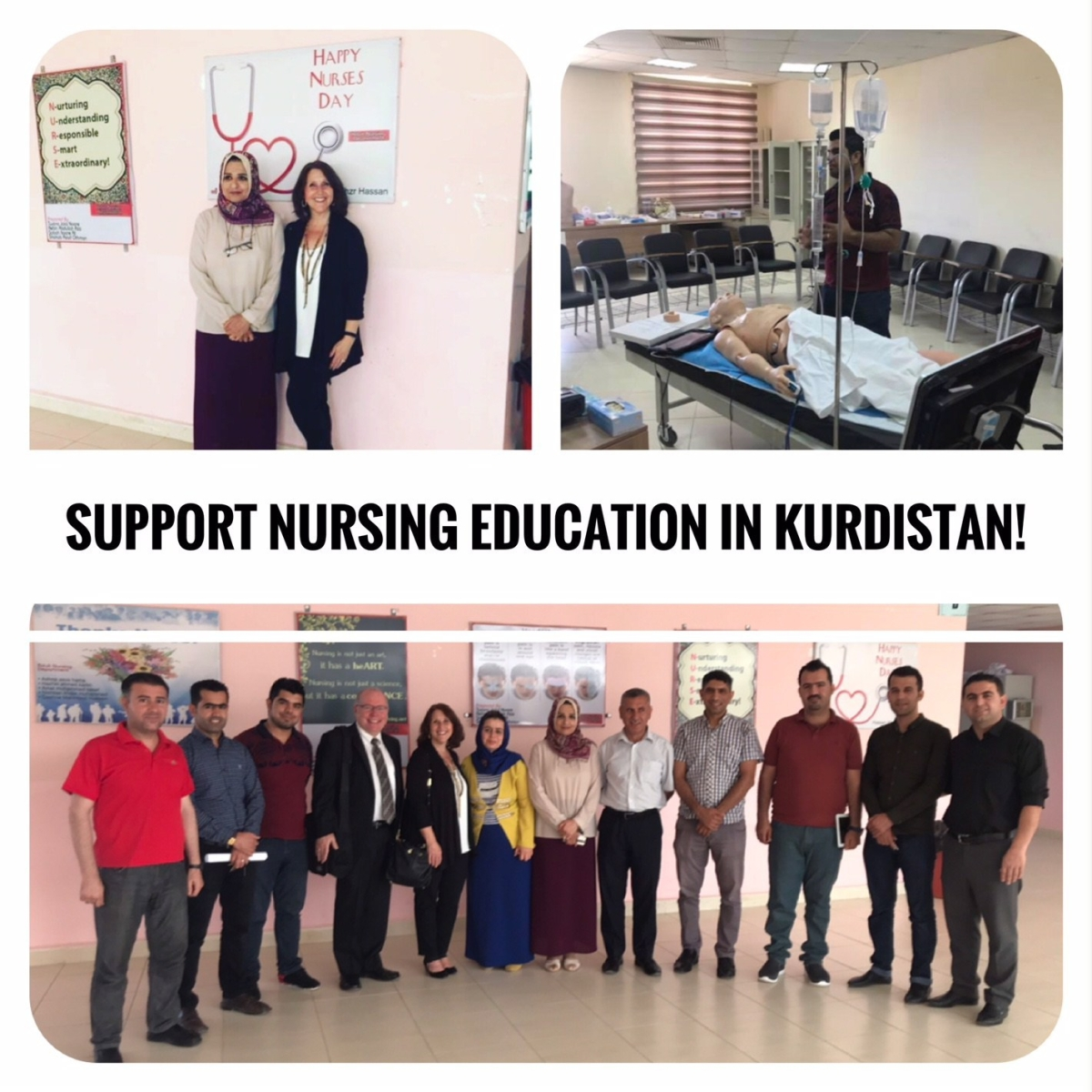 Support Nurses in Kurdistan!