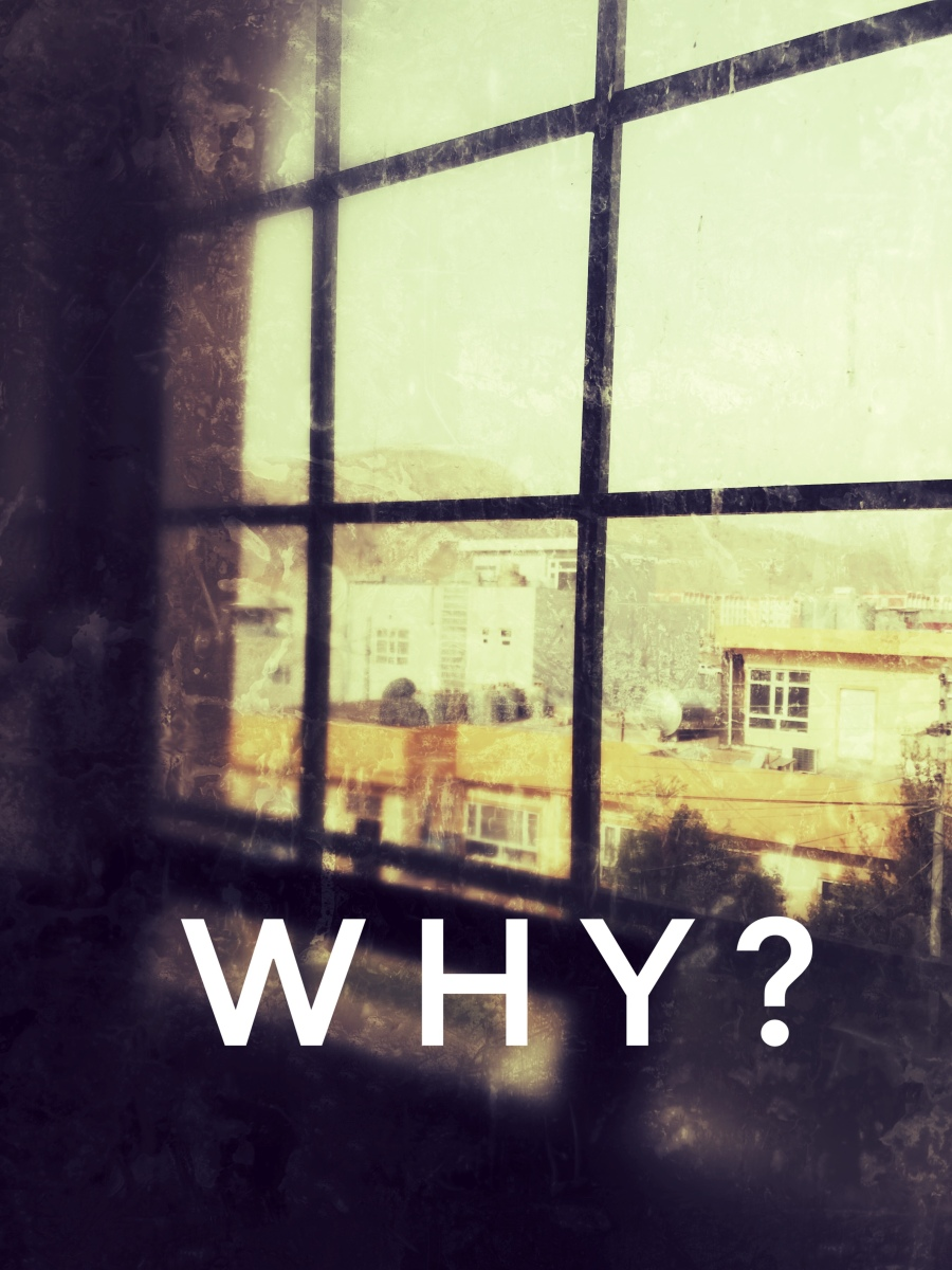 """Why?"" - On One 'Why' Question a Day"